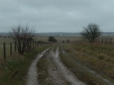 stonehenge-stomp-5