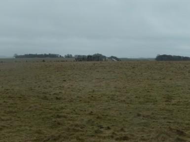stonehenge-stomp-6